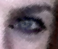 Grey Eyes.jpg